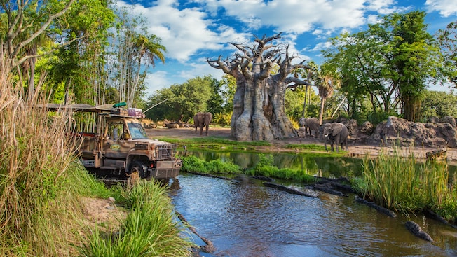 Kilimanjaro Safaris _Disney