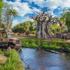 Must-Do Attractions for Walt Disney World Newbies – Part2